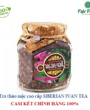 TRA THAO MOC CAO CAP SIBERIAN IVAN TEA